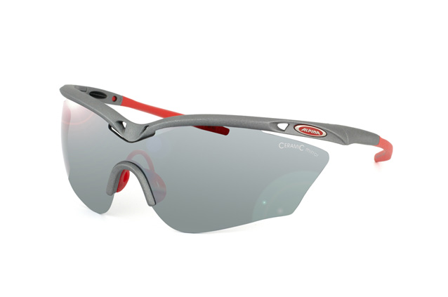 Sportbrille Alpina Guard Shield 2.0