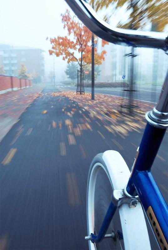 Starty - Rad fährt im Nebel