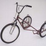Verrückt: Hundeschlitten-Fahrrad