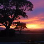 Australien: Mit dem Fahrrad im Outback